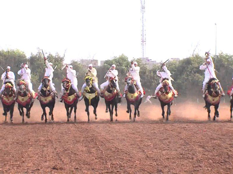 Le prince héritier préside l'ouverture du Salon du cheval d'El Jadida