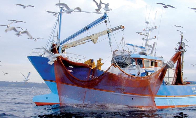 Rapport: L'accord de pêche UE- Maroc a pleinement atteint ses objectifs
