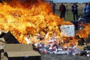 Laâyoune: Incinération de près de 6,5 T de Chira et autres produits prohibés