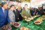 Maroc : La production oléicole en hausse de 28 %
